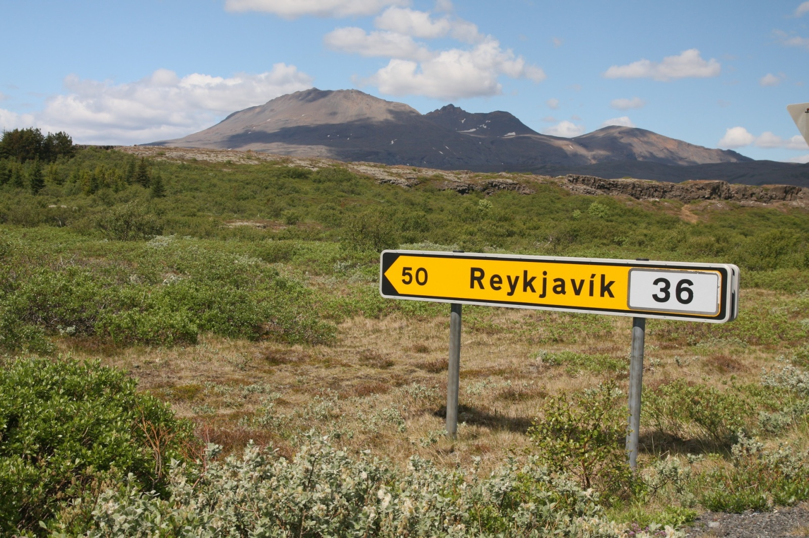 Road signs are yellow in Iceland - these are well visible during the long and dark winter