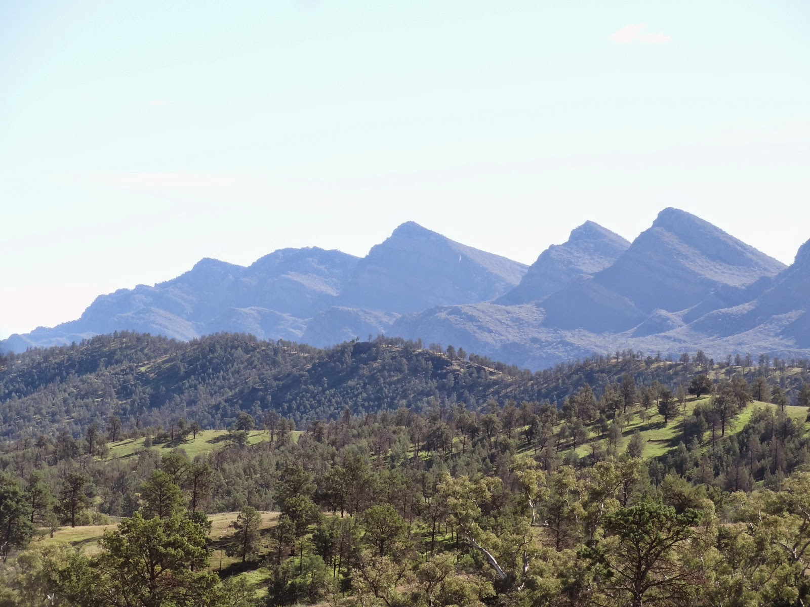 the southern end of Wiplena Pound from Moralana Scenic Drive