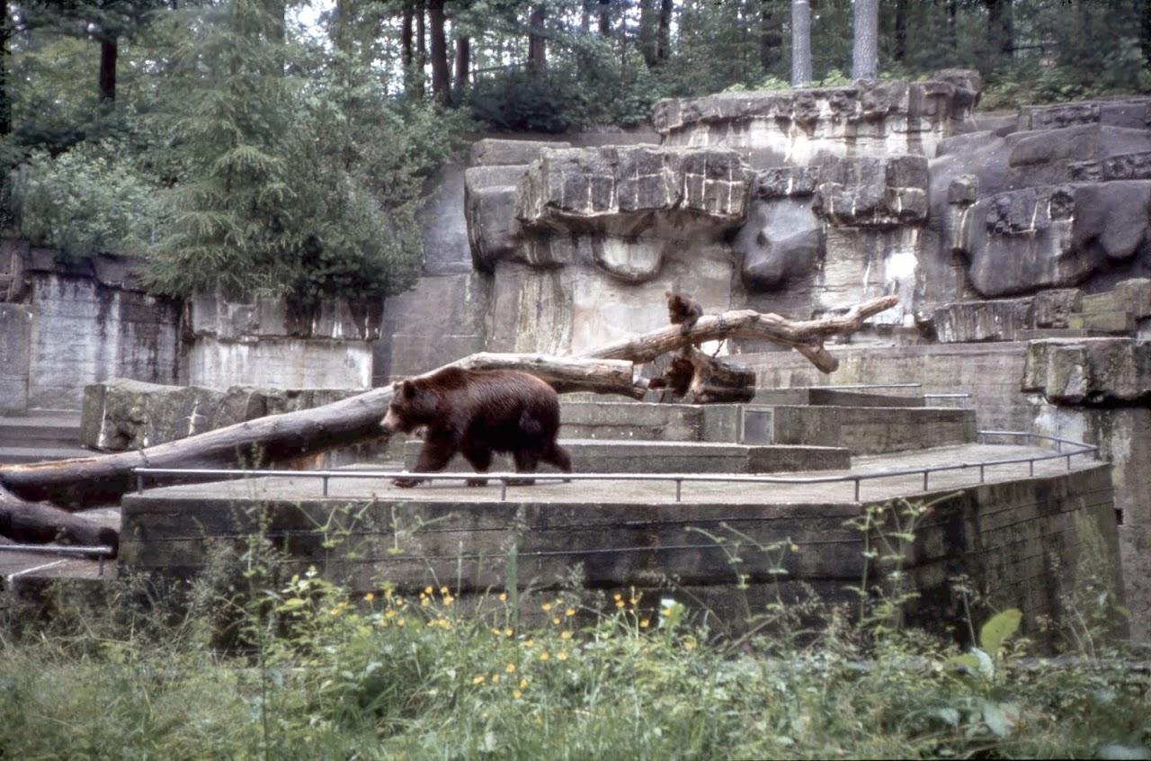 1981 Jugendsonntag - Juso81_029
