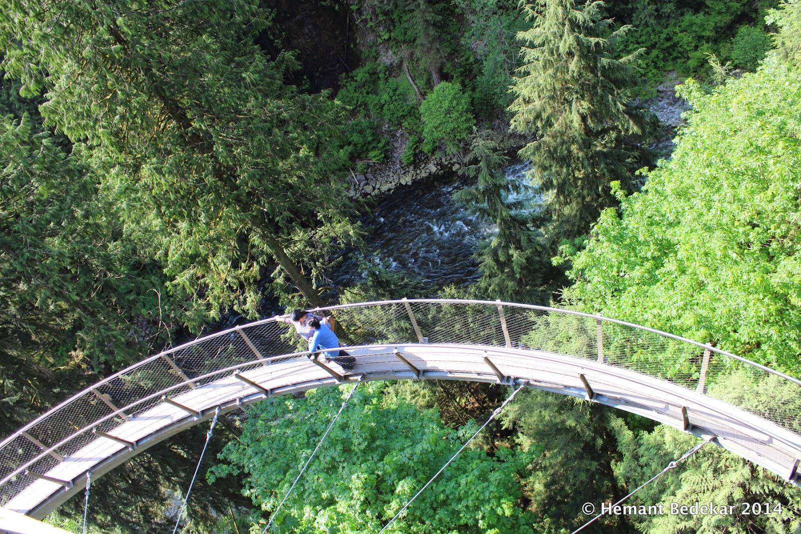 Capilano Suspension Bridge Cliffwalk
