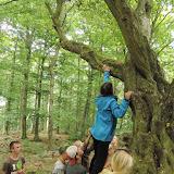 Každý musel za pomoci ostatních vylézt nebo se jinak na strom vyškrábat, aby část ingredience získal
