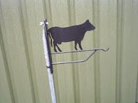 bloemenhanger koe