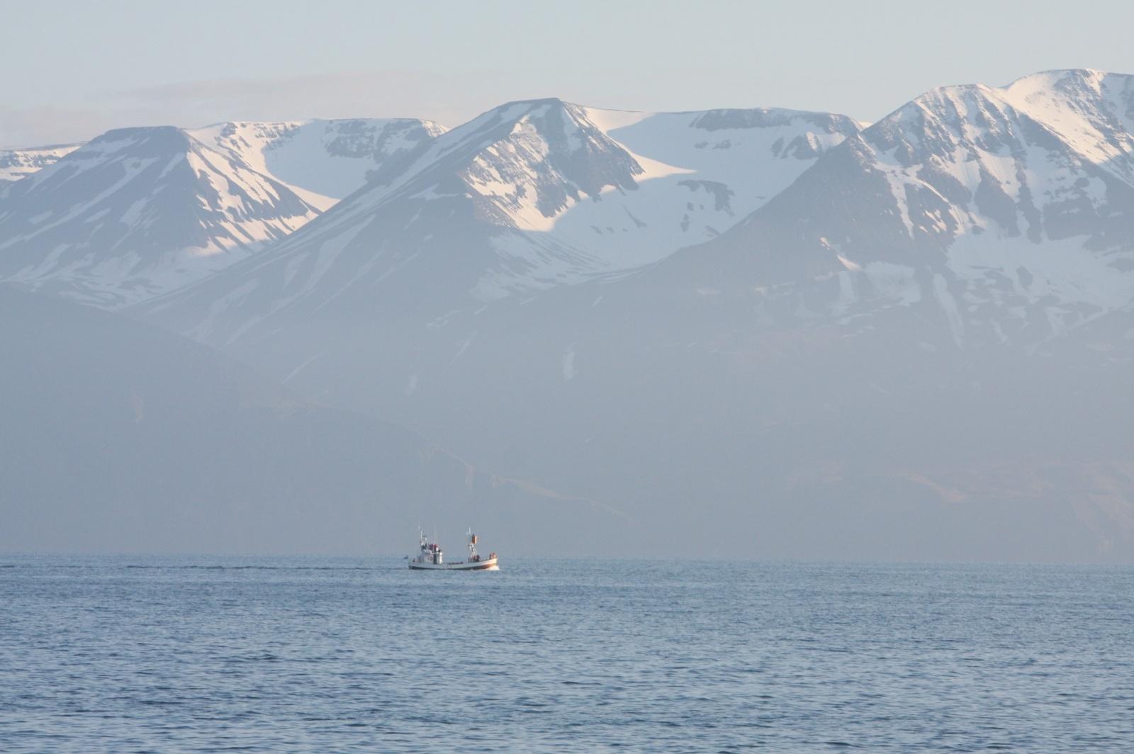 A lone boat