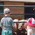 Pig sty, Hagbourne, 1995