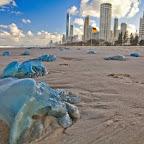 A no-swim day at Gold Coast