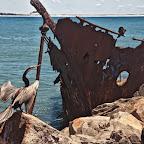 Newcastle has lots of shipwrecks