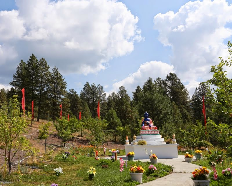 Many flowers offerings and plantings are added around the Medicine Buddha statue at Buddha Amitabha Pure Land, Washington, US, August 2014. Photo by Ven. Thubten Kunsang.