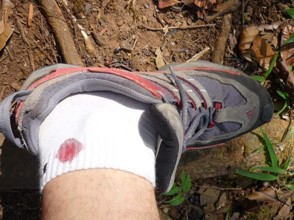 plenty of leech in forest... one got me :(