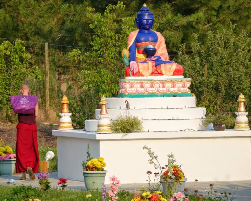 Ven. Tharchin circumambulates worms around the Medicine Buddha statue at Buddha Amitabha Pure Land, Washington, US, July 2014. Photo by Ven. Roger Kunsang.