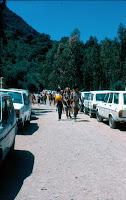 campamento verano 83 (1)