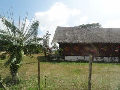 Vanuatu's cheifs assembly house.