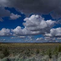 PageSprings_3_