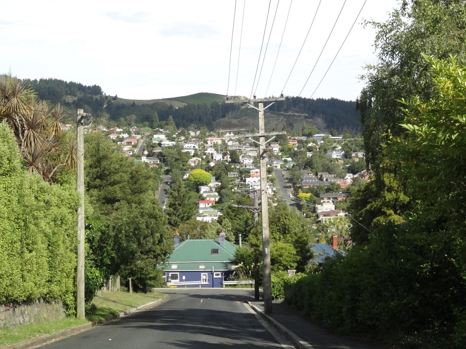 North Dunedin