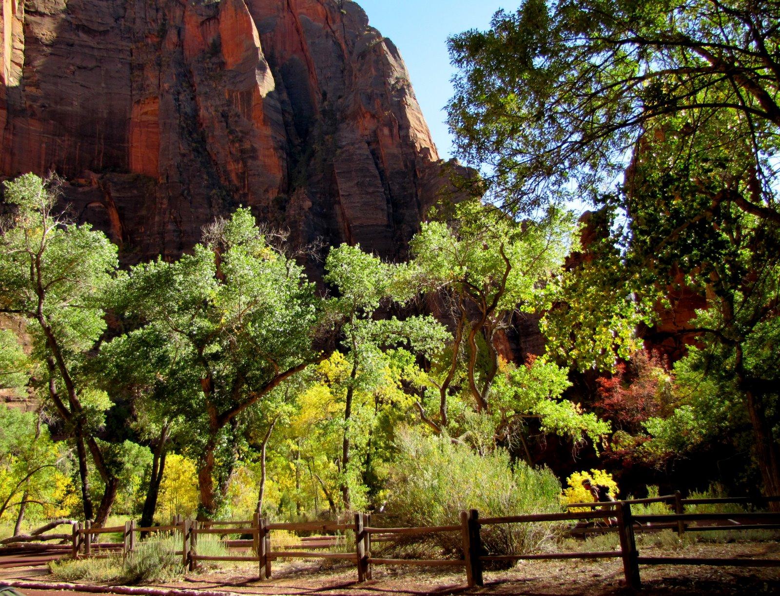 Ősz Zionban  Autumn in Zion
