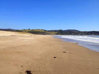 Buffalo beach, Whitianga