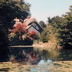 Pond at West Hagbourne, 1995