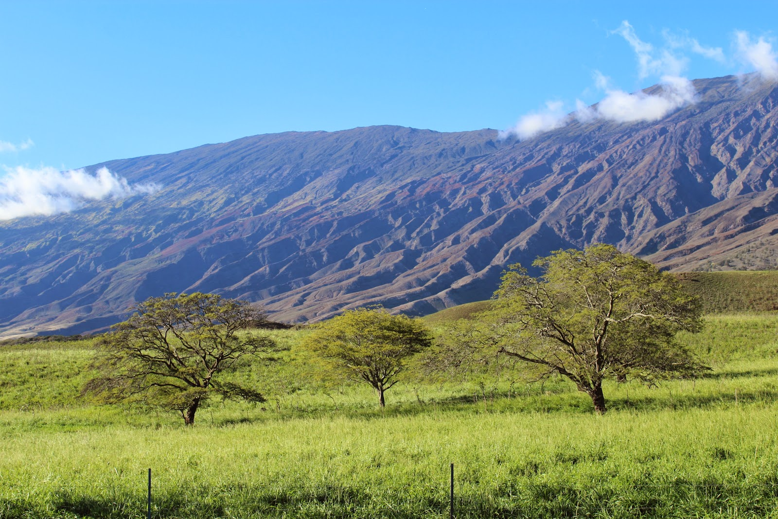 The back side of Haleakala
