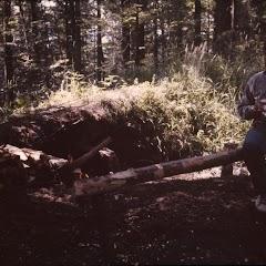 1985 Sommerlager - Sola85_195