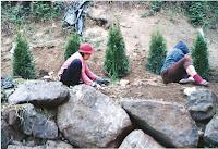 1994 - Senior Helpers