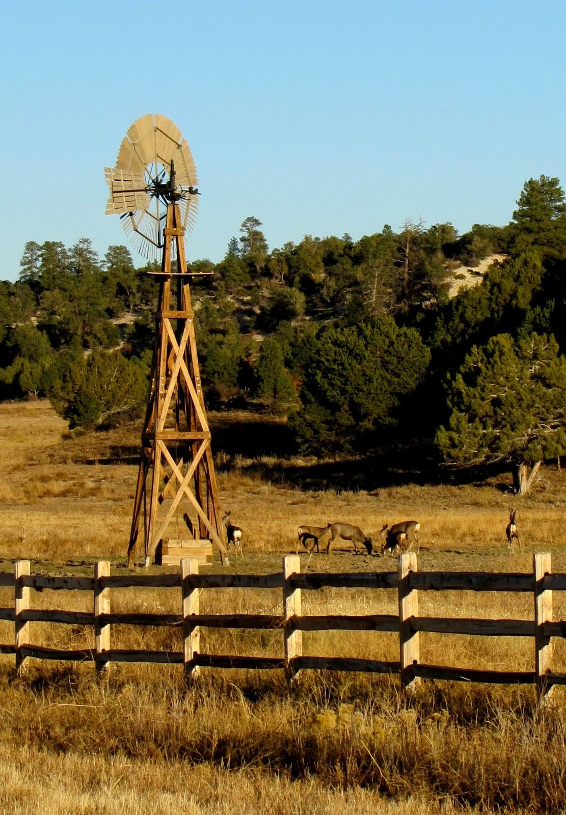 Windmill with deers