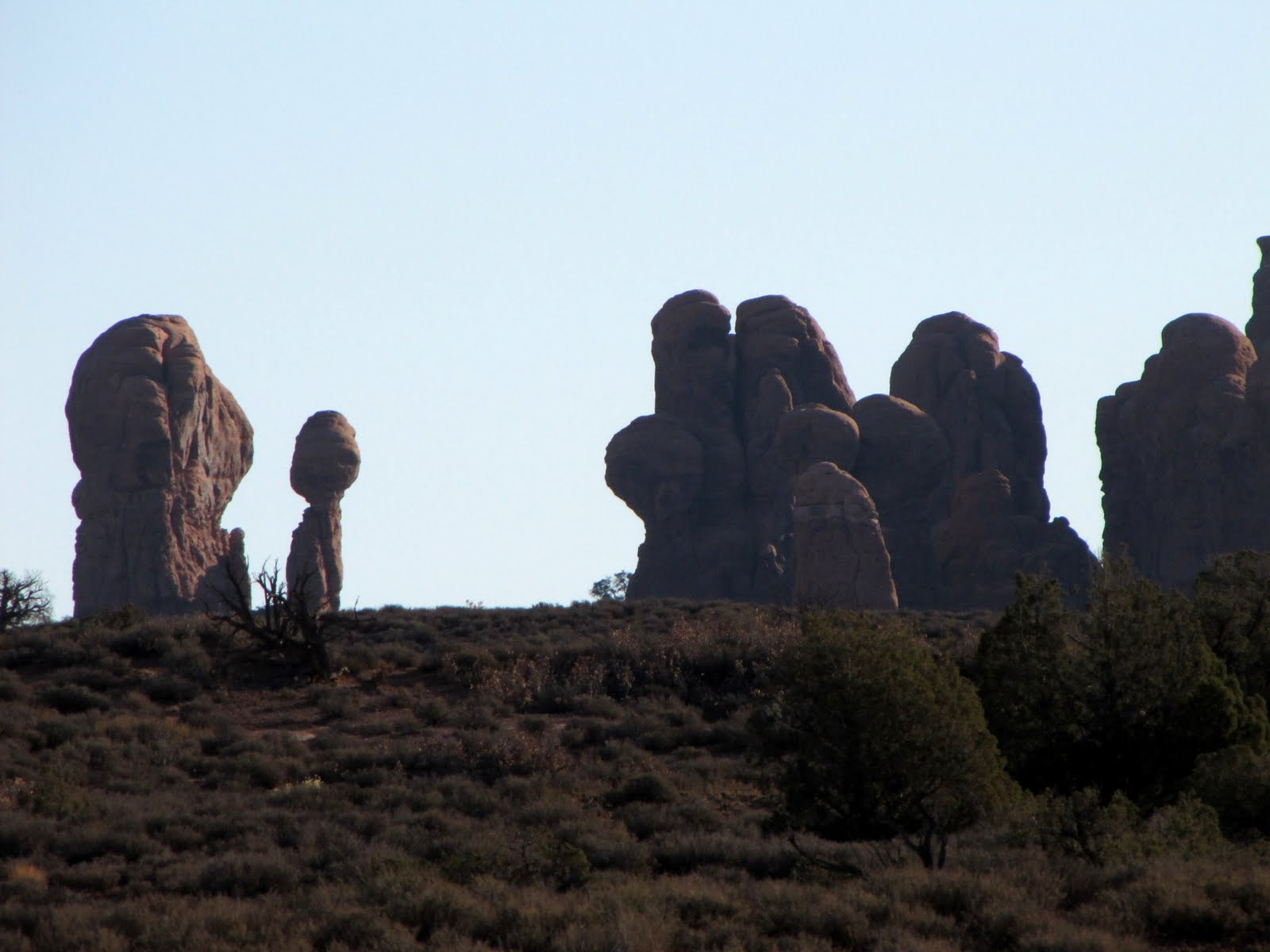 Statues of Nature
