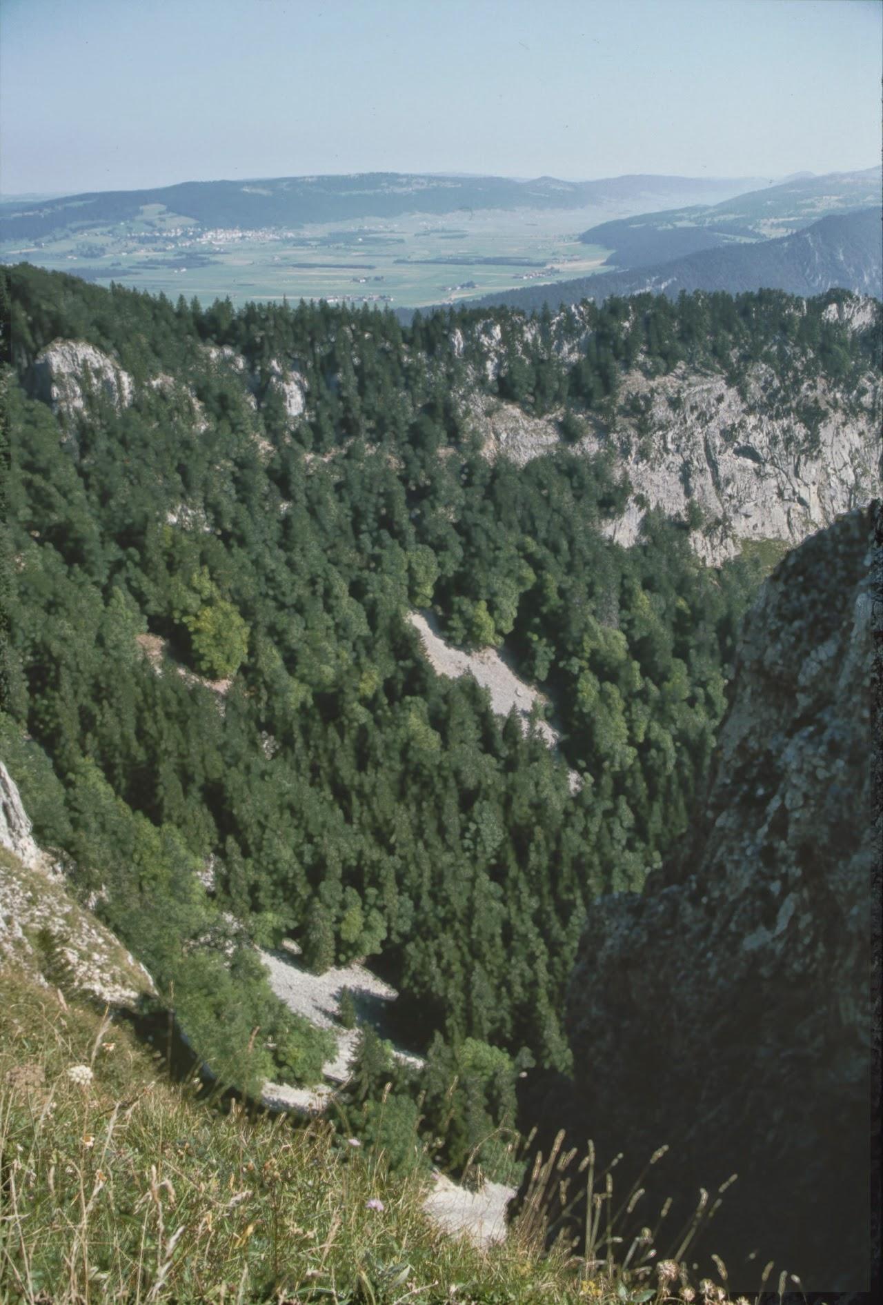 1994 Sommerlager - Sola94_161