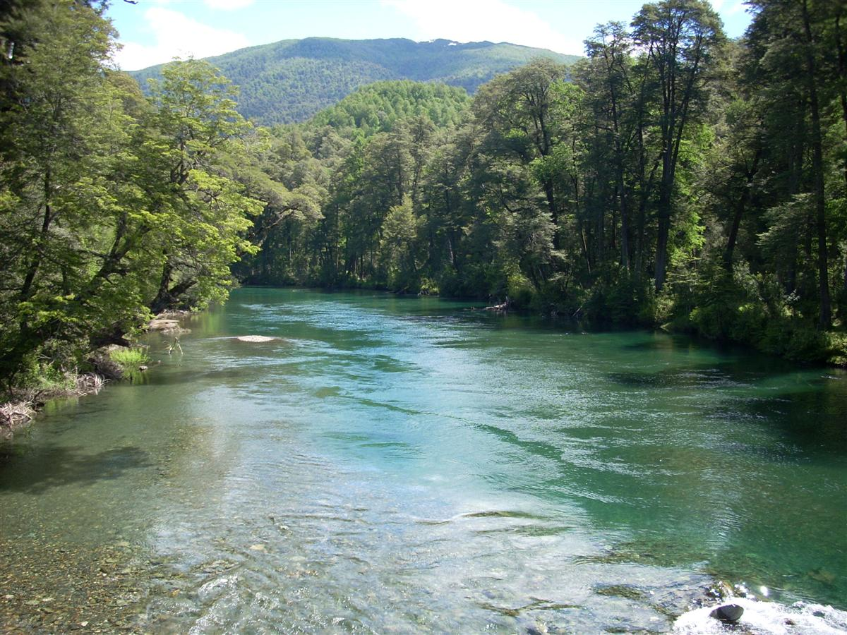 Plenty of clean rivers like this, easy to get water around here.
