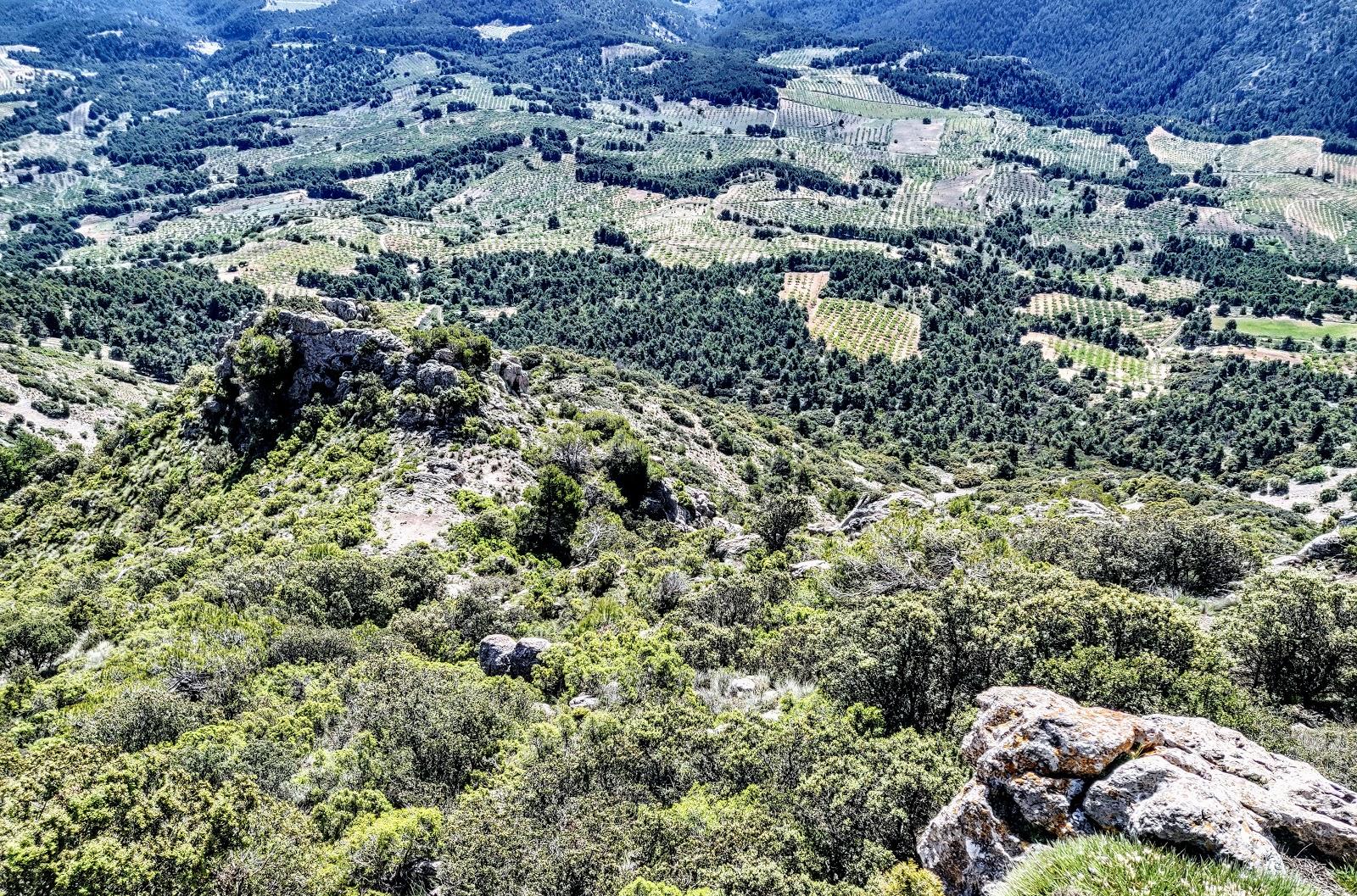 Pico Selva