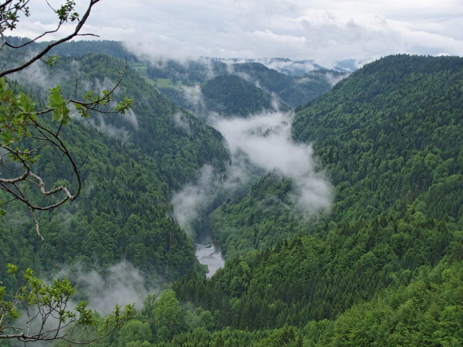 Belvédère des Vieilles Femelles Gorges du Doubs