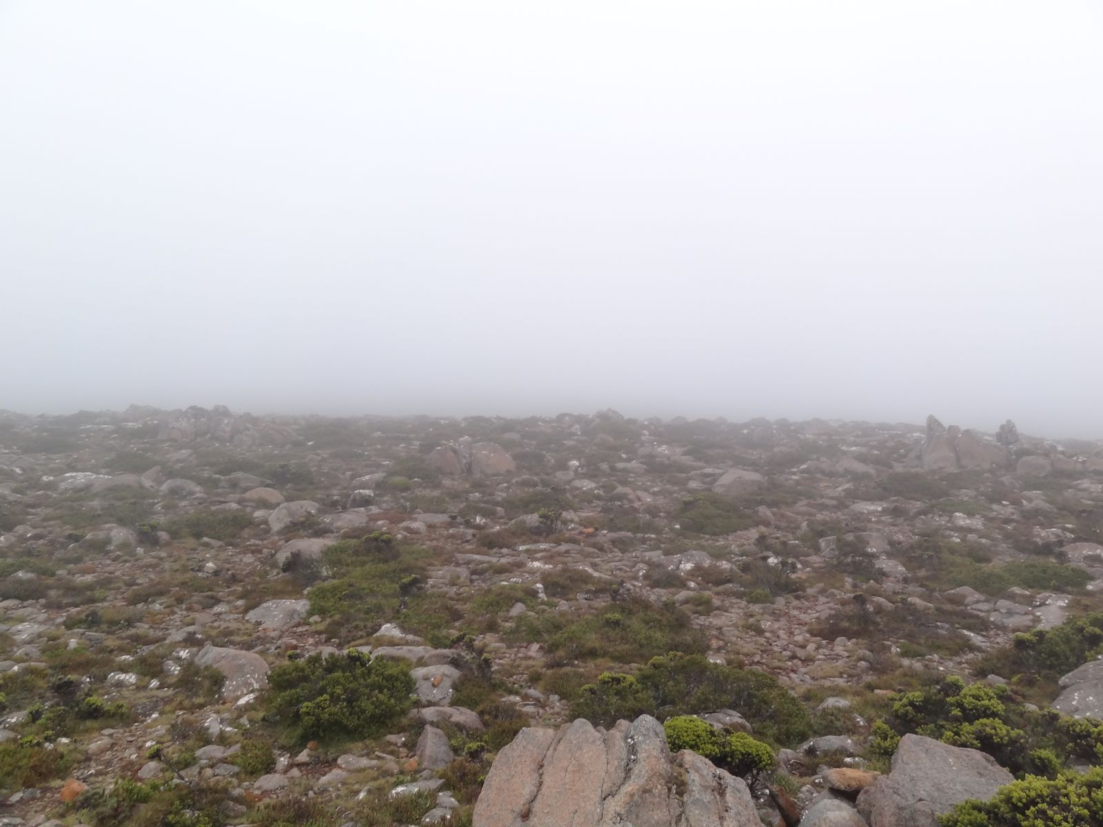 It was a nice day so drove up 1200m+ only to get caught in a rain storm...It dropped to 2 degrees!