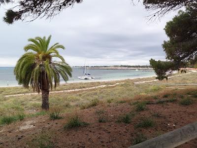 Thomson Bay