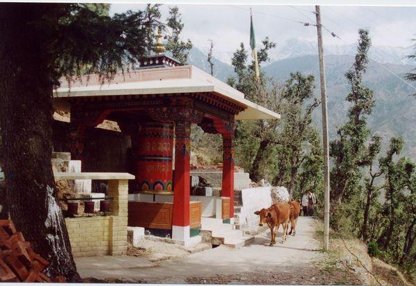 Large prayer wheel in Dharamsala, India.
