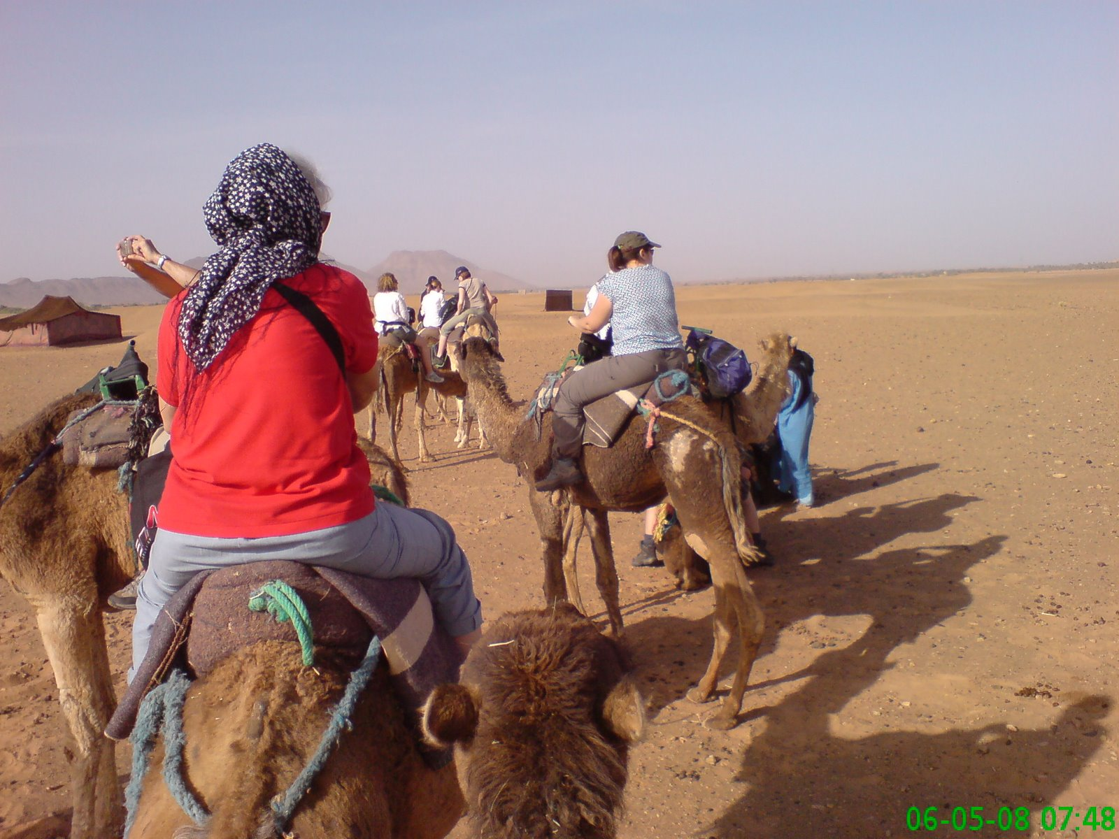 Oh no, not another camel trek, ouch