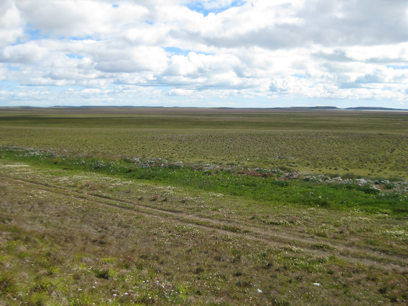 Boring flat grasslands