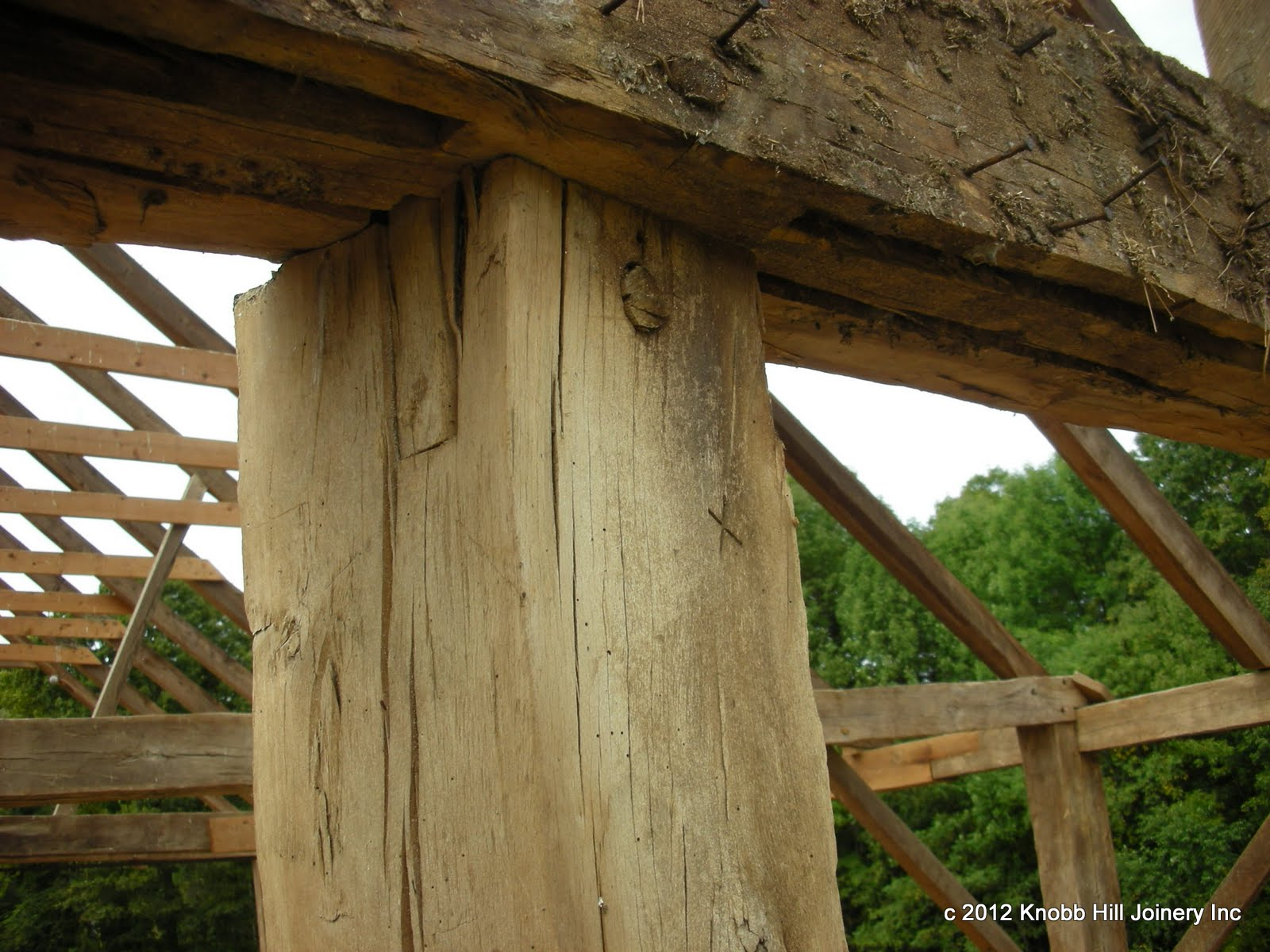 The boarding grooves in the plates and tie beams have the unusual detail of stopping at each post.  This post top shows an original free-tenon.