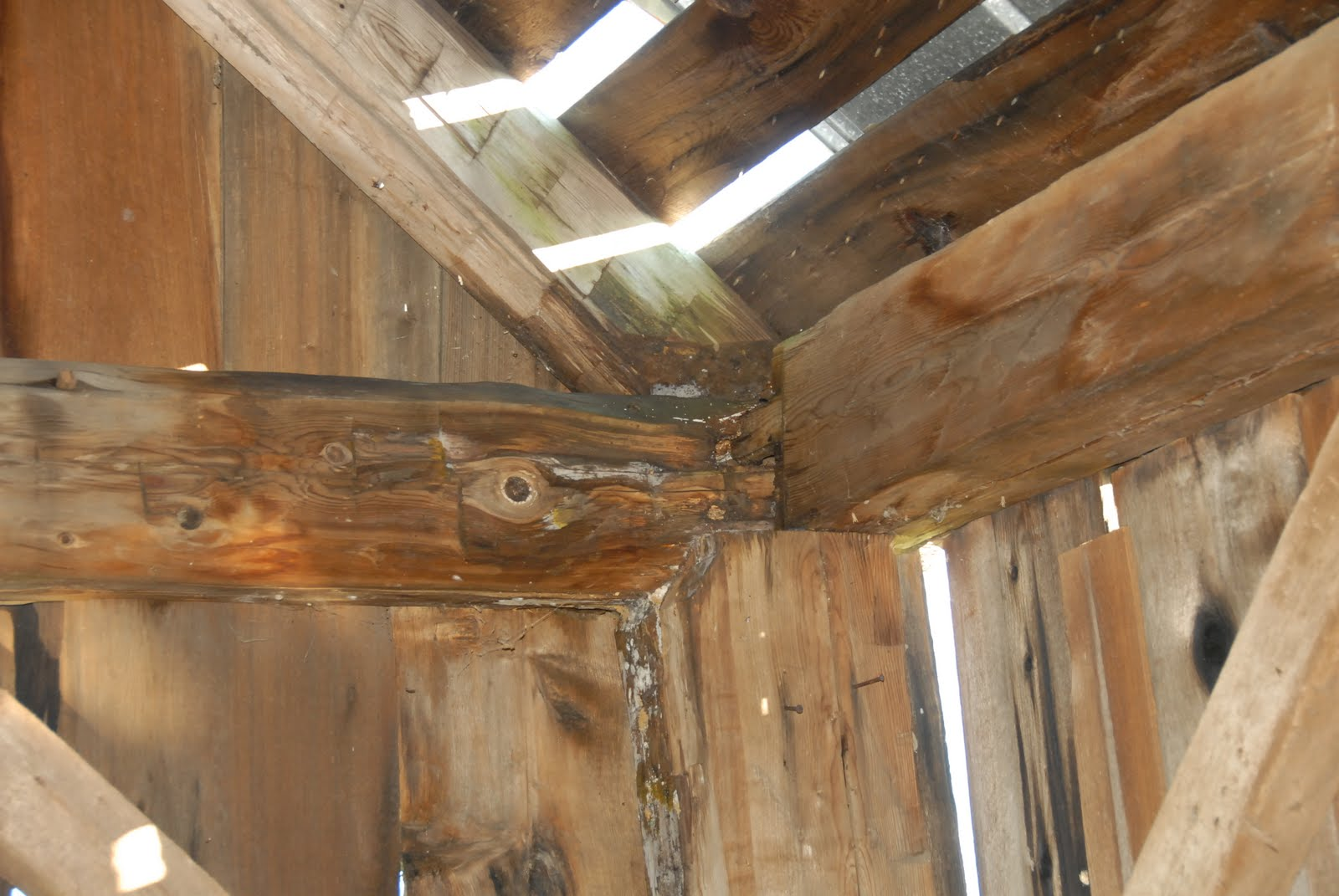 Water damage at the plate, tie, post and rafter is illuminated by light shining through the missing roofing.