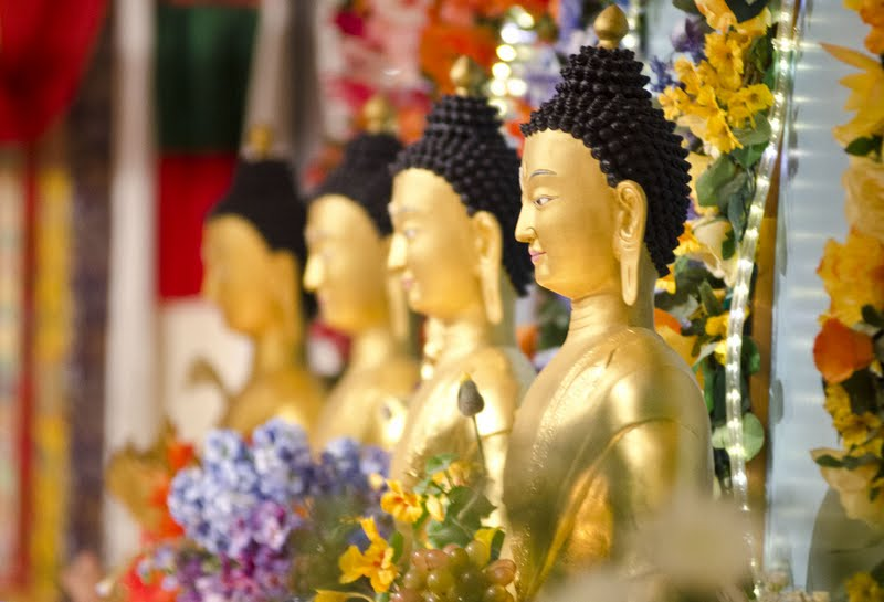 Medicine Buddha's at Land of Medicine Buddha