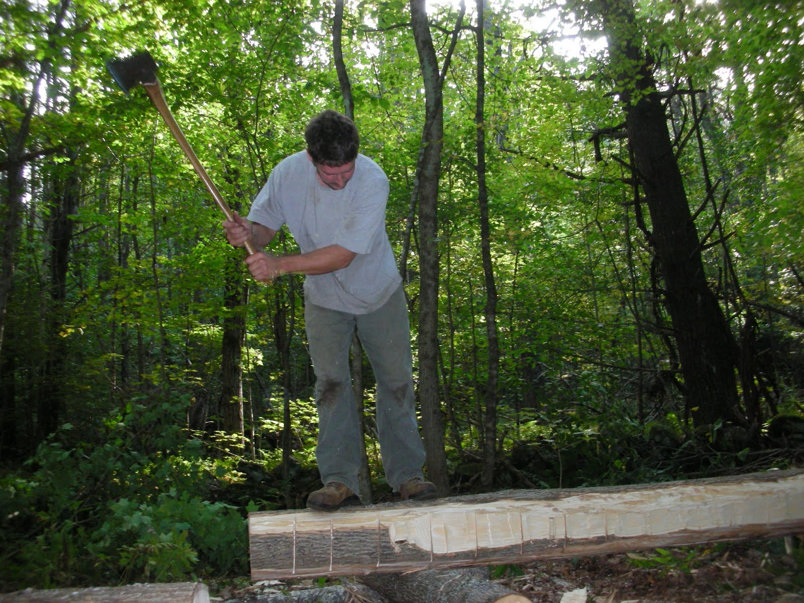Seth Kelley scores and Ash log from the property to be hewn into a floor joist.
