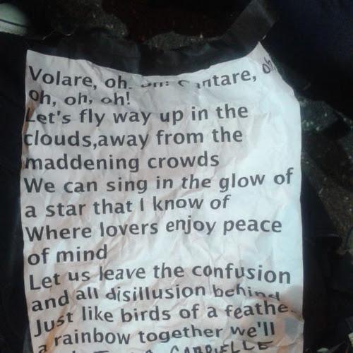 Il testo di Volare