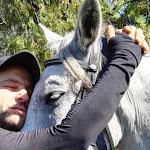 A ló megtanítja az embert, hogy figyeljen rá