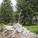 Nejvyšší vrchol Brd - Tok (865 m n. m.). Je tak výrazný, že na něm jsou navršeny kameny, aby byl vůbec poznat.