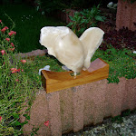 Hart albast (verkocht)