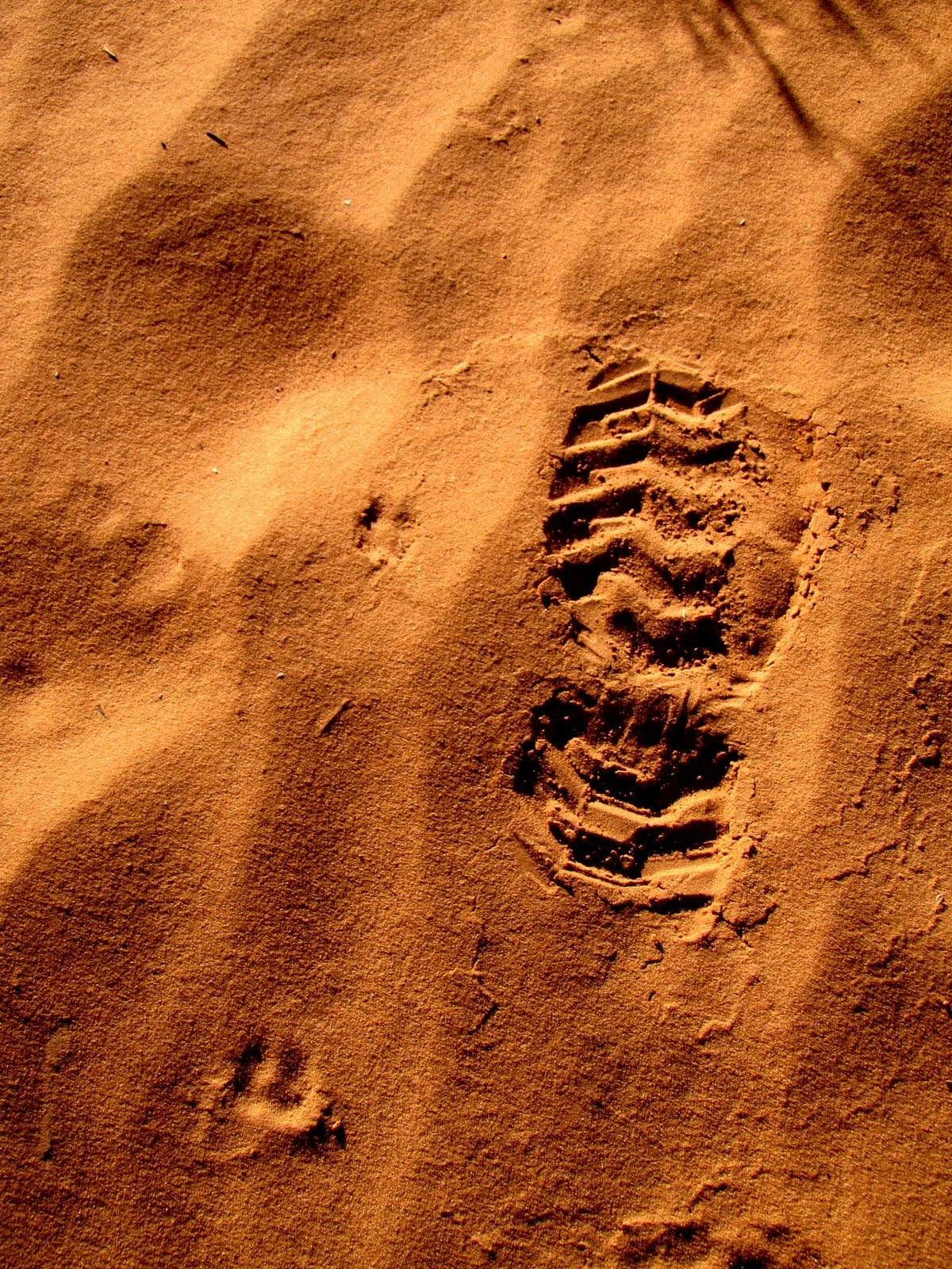 That's one small step for mankind, one giant leap for a man
