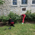 Gardens & Grounds Clean-up 2016
