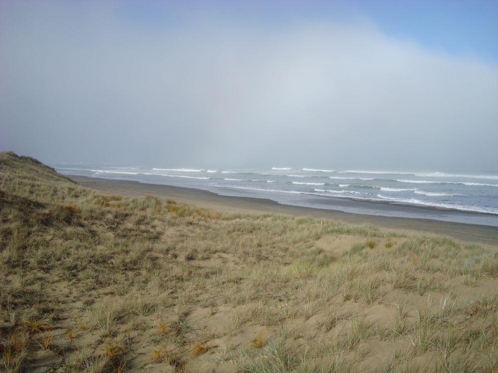 90 Mile Beach just north of Kaitaia