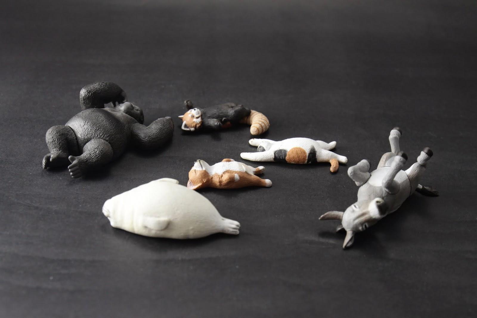第一彈 睡死的五種動物