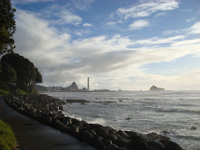 New Plymouth Port in the distance