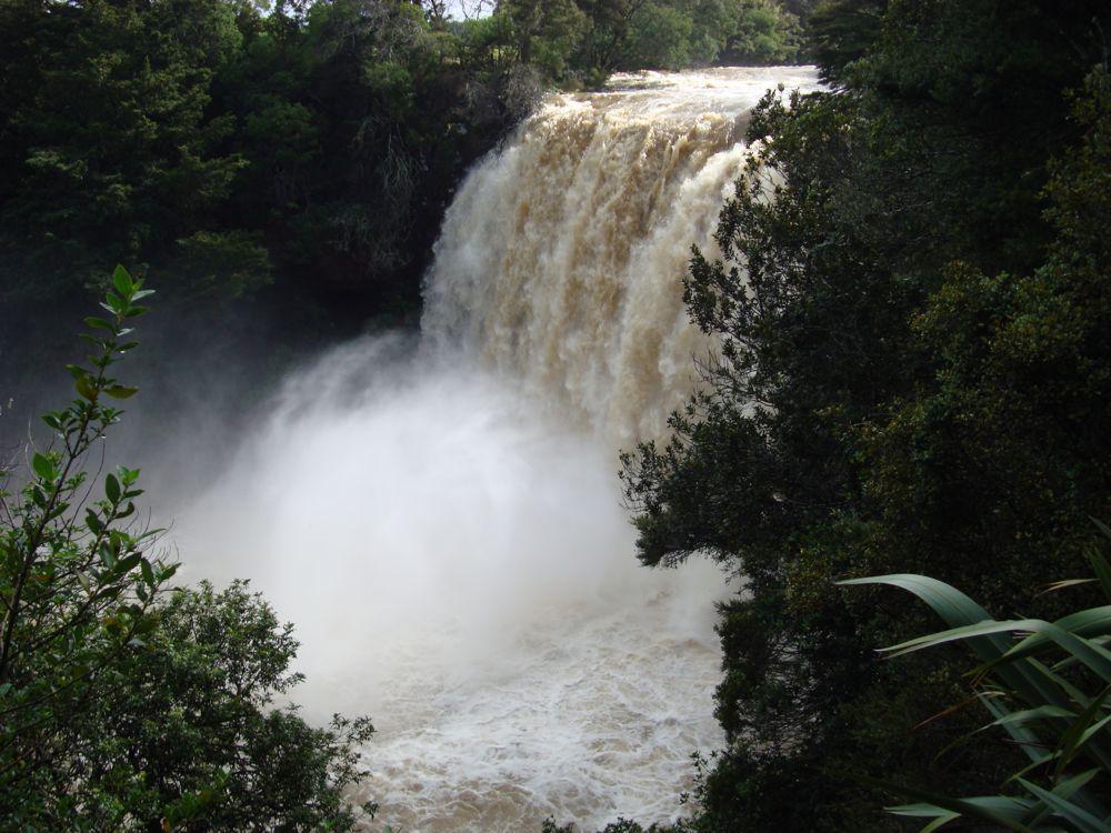 Rainbow Falls, Kerikeri