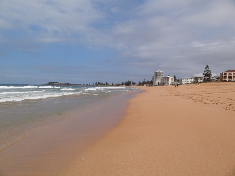 Looking North at South Narrabeen Beach