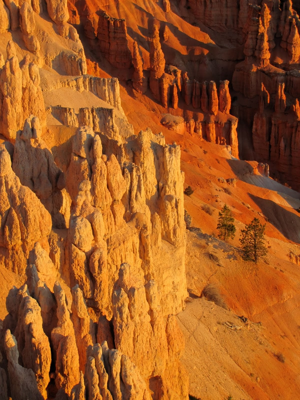 The Real Colors of Bryce Canyon